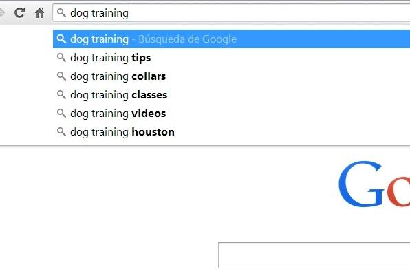 Google suggest screenshot