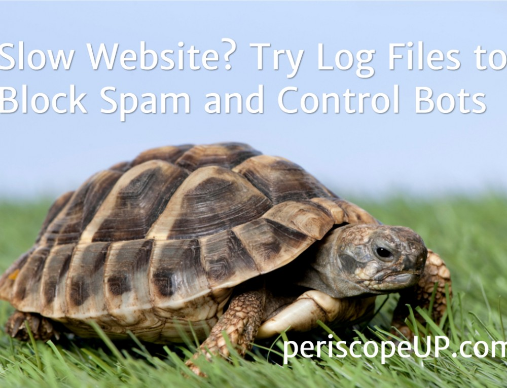 Slow Website? Try Log Files to Block Spam and Control Bots