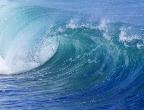 How To Get Noticed In The Content Marketing Tsunami