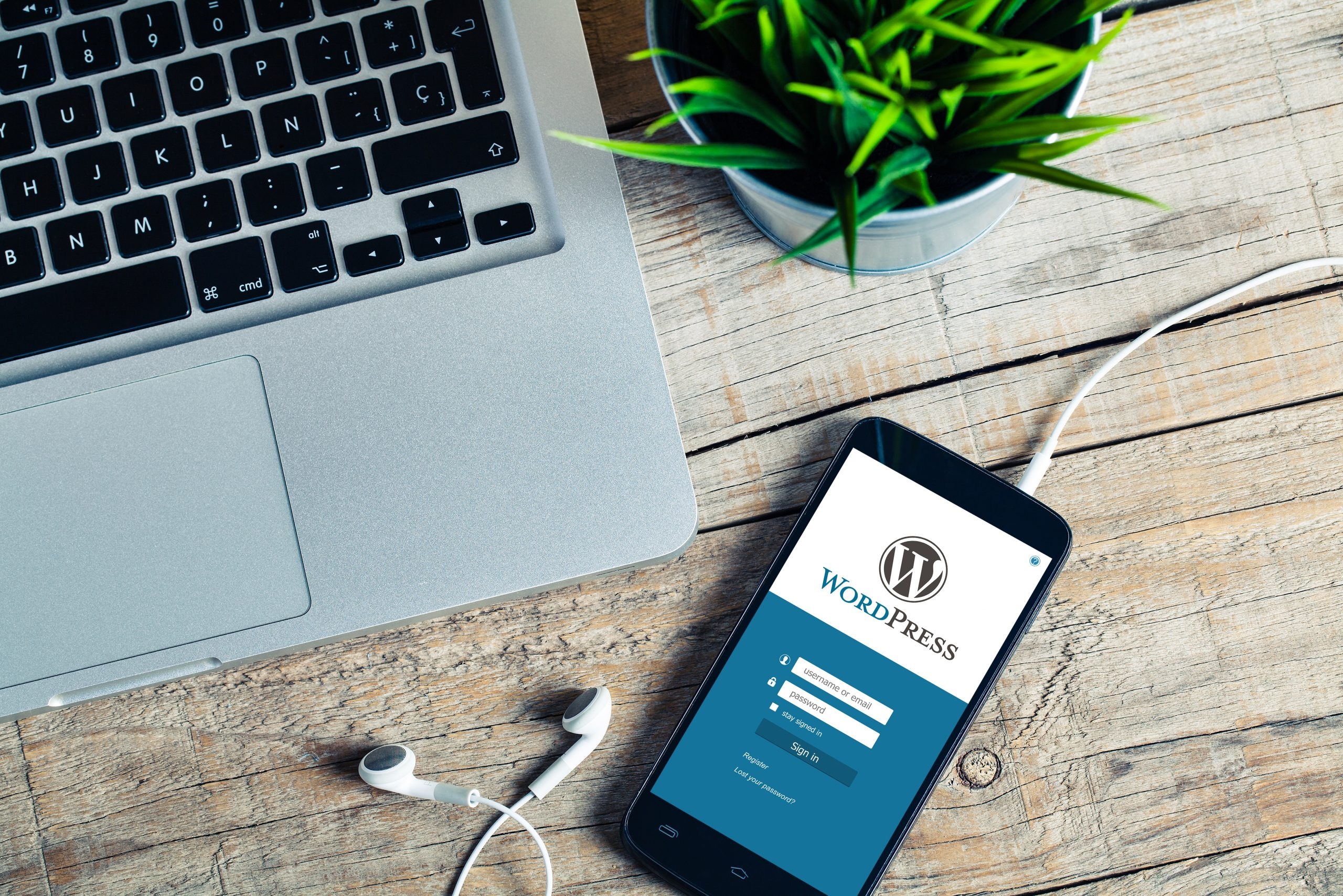 Image of a laptop, plant and a mobile phone with Wordpress on the screen.