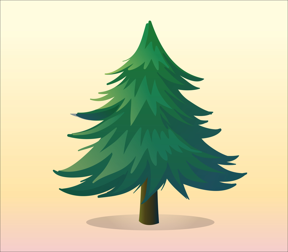 Image of pine tree to represent evergreen content and how it should be maintained for best SEO results