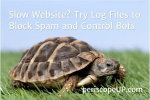 Title image of turtle as illustration of Using Log Files to Block Spam and Control Bots